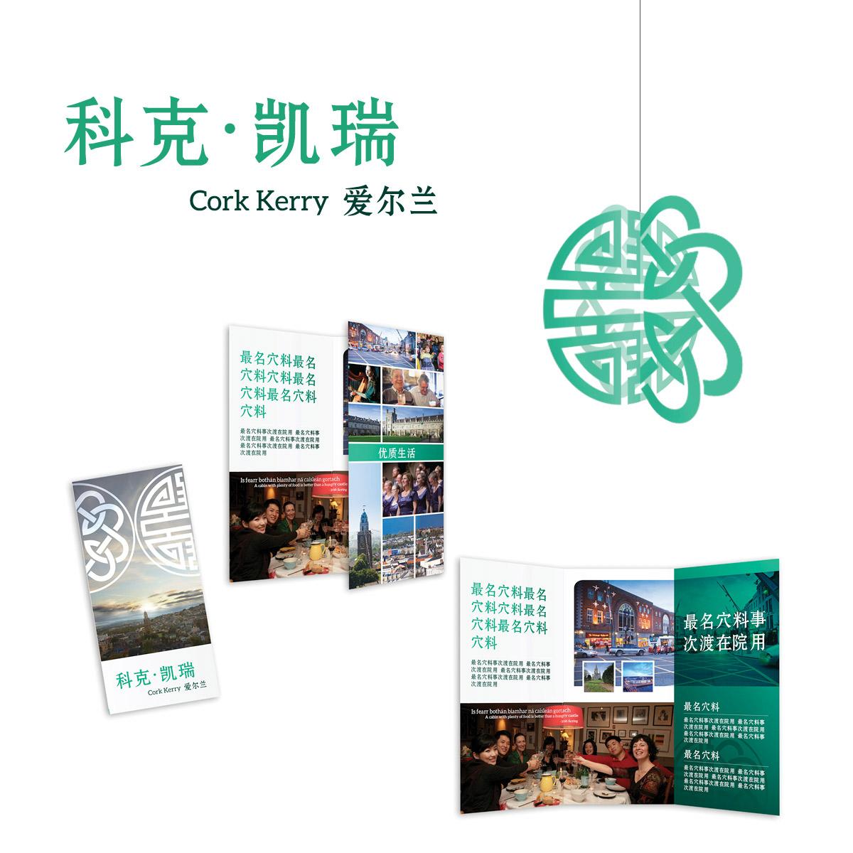 CorkCityCouncil_BeijingExhibit_01.jpg