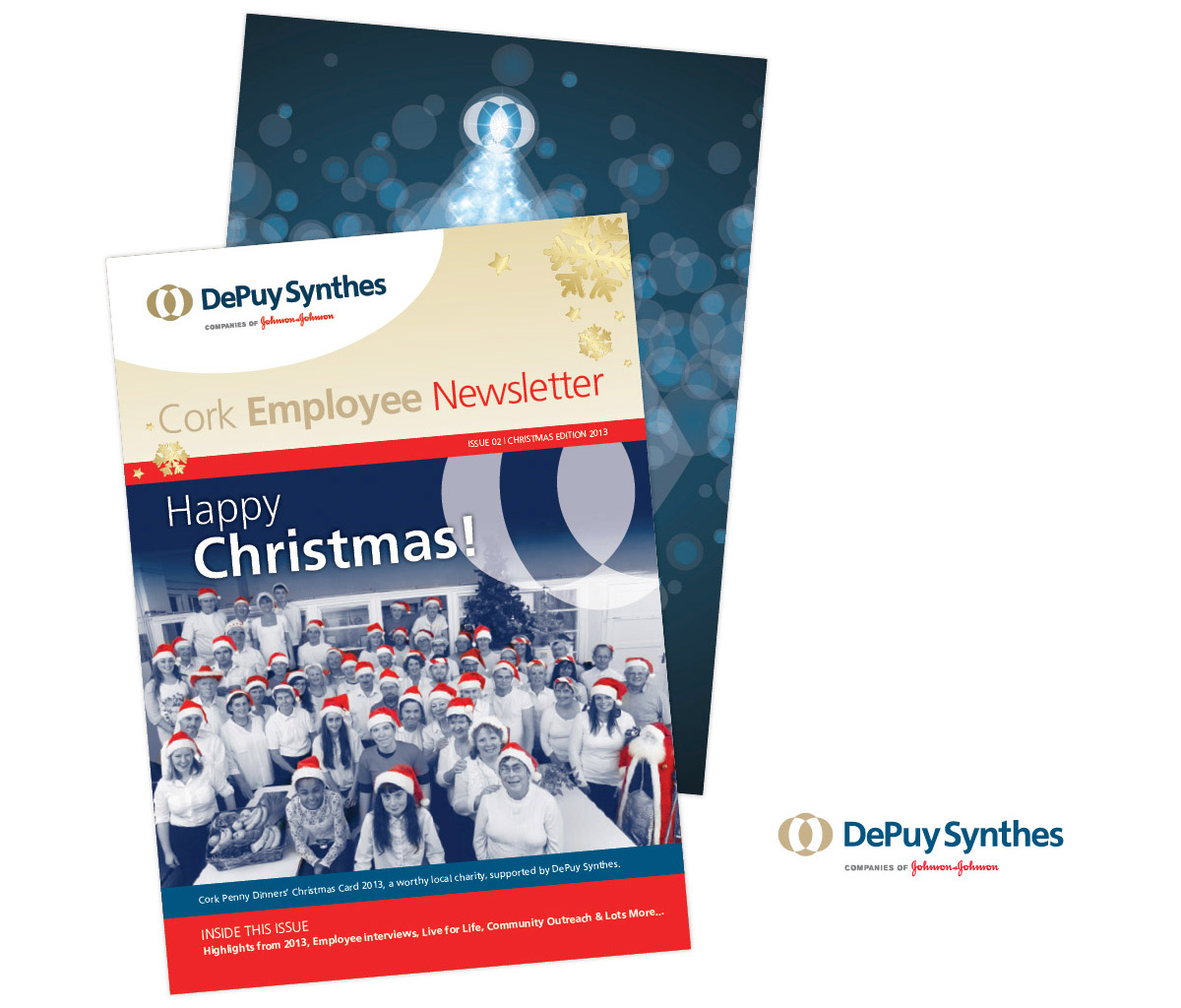DePuySynthes_NewsletterXmas13.jpg