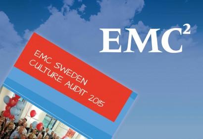 RAV_EMC_SWEDEN_FEATURE IMAGE